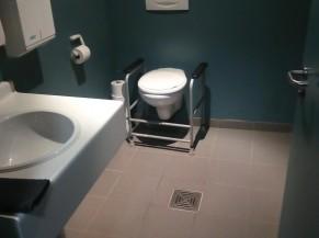 La toilette adaptée avec un lavabo