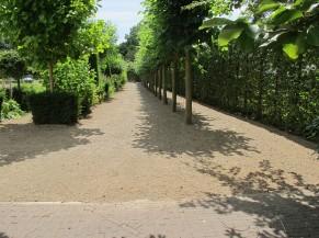 Cheminement vers l'Orangerie