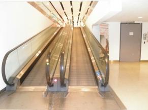 Escalator pour Caddies