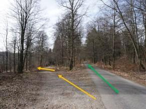 Photo du chemin d'accès vers l'aire d'observation