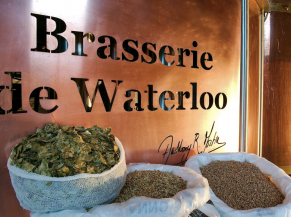Brasserue de Waterloo