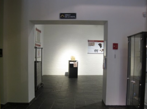 Début de la visite - entrée salle 1