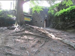 Voie d'accès à l'entrée des ruines du château