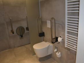 Salle de douche de la chambre adaptée
