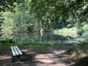 Zone de repos au bord de l'eau