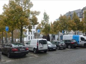 2 emplacements de stationnement réservés aux personnes handicapées Place Saint barthélémy