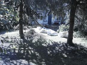 Accès depuis l'arrière du jardin (dépose-minute depuis la rue) vers l'entrée alternative PMR via un chemin en graviers