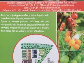 Le jardin des petits fruits: Observer, sentir et déguster des fruits de nos régions.