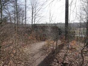Photo du sentier menant à l'aire d'observation