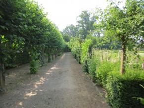 Cheminements  stabilisés aux abords de l'Orangerie