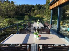 Hôtel Restaurant La Libellule, terrasse du restaurant avec vue sur les étangs